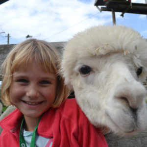 Girl And Lama