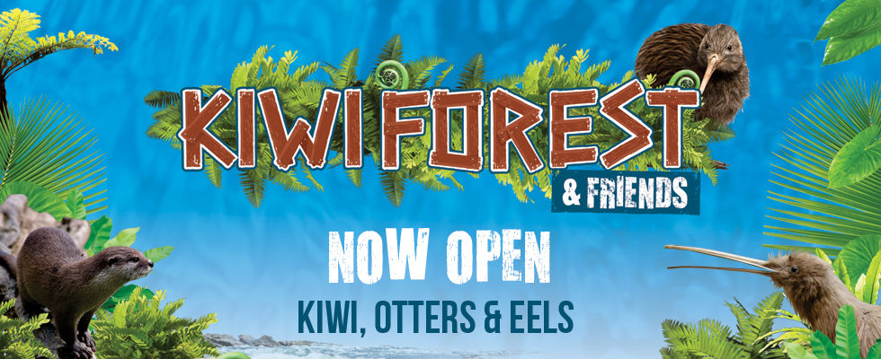 Web Kiwiforest—now Open